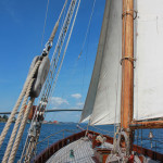 Wyvern_Tall Ships Bergen 2014 (Foto_Kjersti Monsen) 008
