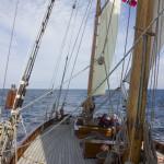 Wyvern_Tall Ships Bergen 2014 (Foto_Kjersti Monsen) 295
