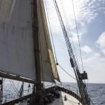 Wyvern_Tall Ships Bergen 2014 (Foto_Kjersti Monsen) 298