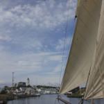 Wyvern_Tall Ships Bergen 2014 (Foto_Kjersti Monsen) 326